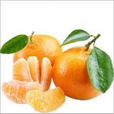 正宗涌泉蜜桔 新鲜水果 橘子 贡品桔8斤礼品装